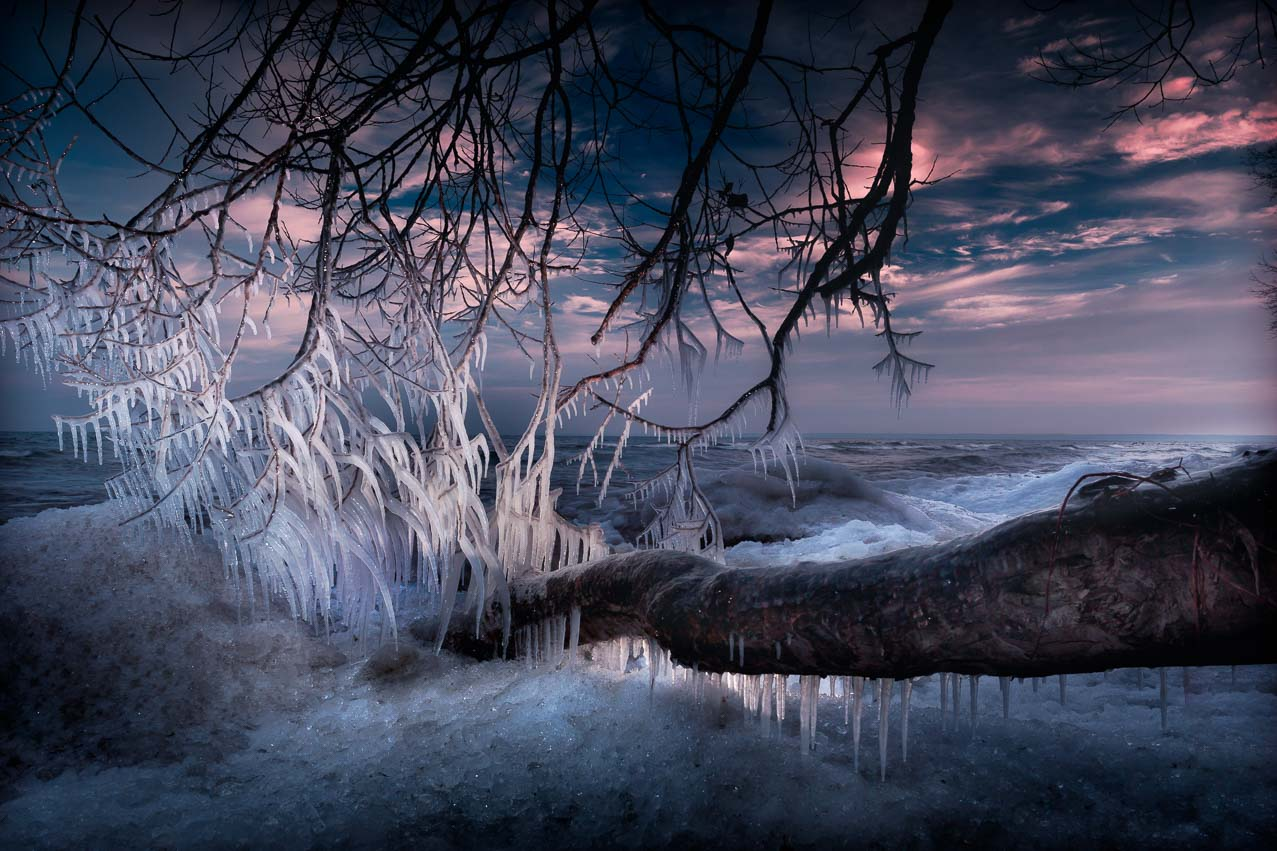 Winter scene Bronte ice trees